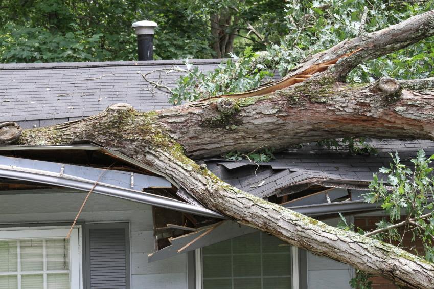Die Sturmversicherung schützt sie vor Schäden die durch Sturm entstanden sind!