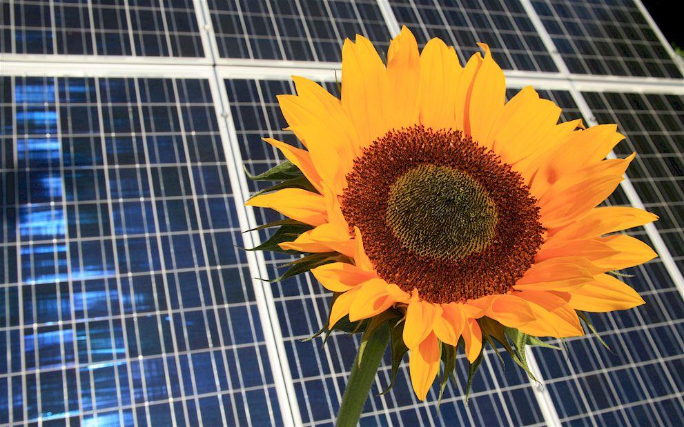 Photovoltaik- und Solarenergie