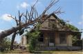 Die Beseitigung von Sturmschäden sollte nicht auf die lange Bank geschoben werden (Foto:  dustie / Clipdealer.de)