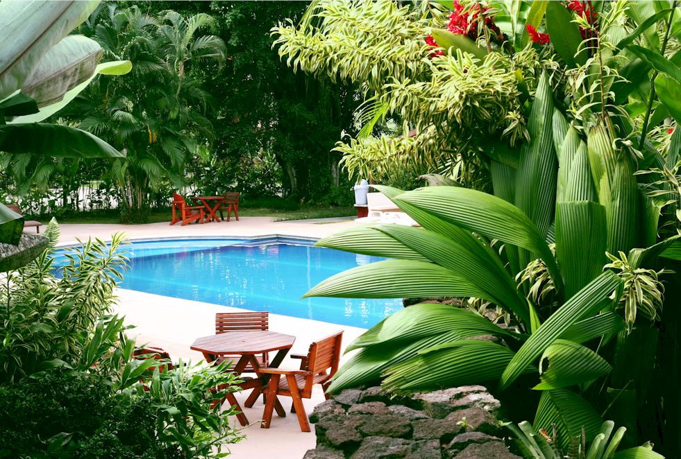 Swimmingpool krönt den eigenen Garten | MEIN BAU