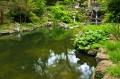 """Wenn Ihr Teich nach längerer Hitzeperiode """"gekippt"""" ist, hilft nur eine gründliche Reinigung. (Bildnachweis: elenathewise / clipdealer.de)"""