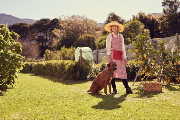 Nutzbeete sollten von Hunden nicht betreten werden und sind Tabuzonen. (Fotoquelle:  mavoimage / clipdealer.de)