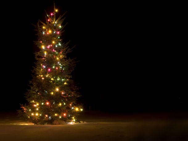 Wählen Sie bei der Weihnachtsbeleuchtung energiesparande LEDs. (Fotoquelle: brentmelissa / clipdealer.de)