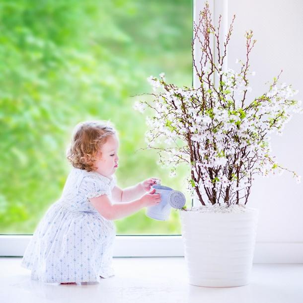 In der Vase sehen sie in jedem Zimmer super aus! (Bildquelle: famveldman, clipdealer.de)