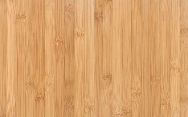 Bambus ist DIE Alternative zum Tropenholz. (Fotoquelle:  eugenesergeev / clipdealer.de)