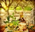 Lecker! Eine eigene Olivenernte ist auch in Deutschland, Österreich und in der Schweiz möglich. (Bildquelle: photopiano, clipdealer.de)