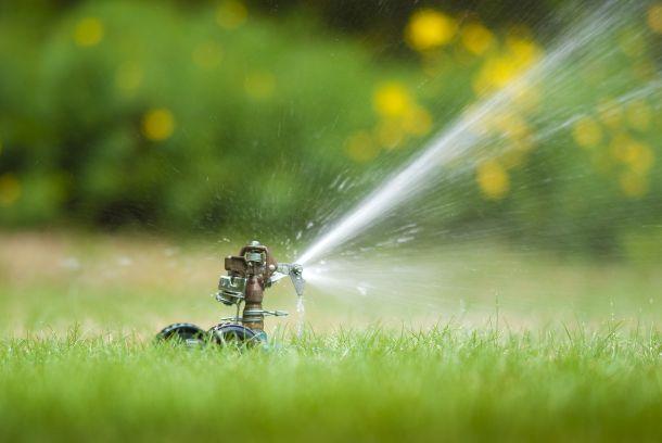 Idel zum Wässern ist ein Rasensprenger, der die Fläche gleichmäßig besprüht. (Fotqquelle: babar760 / clipdealer.de)