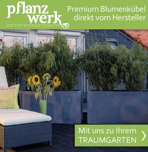 Blumenkübel direkt vom Hersteller - Pflanzwerk