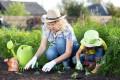Ein beliebtes Element der Gartengestaltung sind Beete.