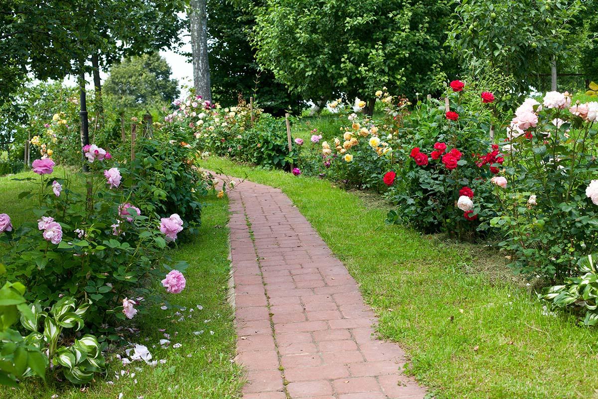 Erst Wege und Treppen ermöglichen es, den Garten am Hang zu nutzen.