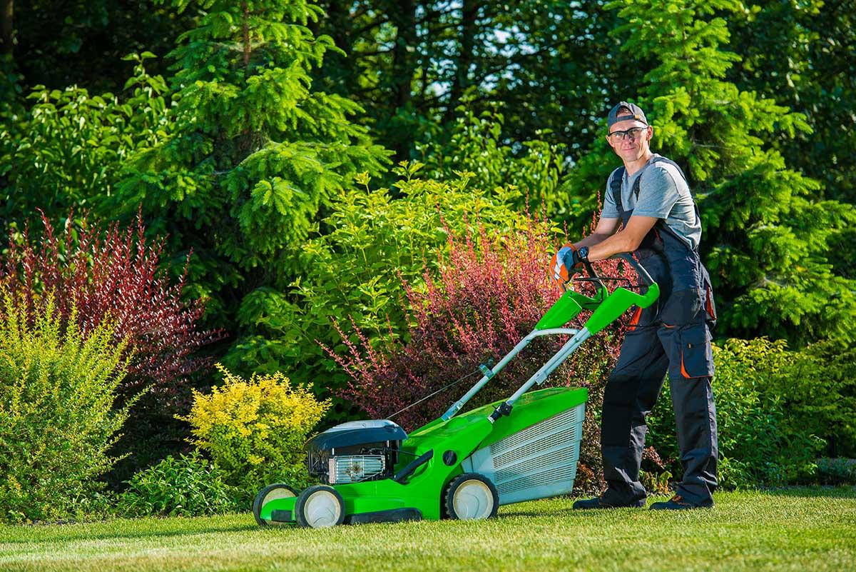 Rasenmähen sollte den gesamten Sommer über nach einem festen Plan erfolgen.