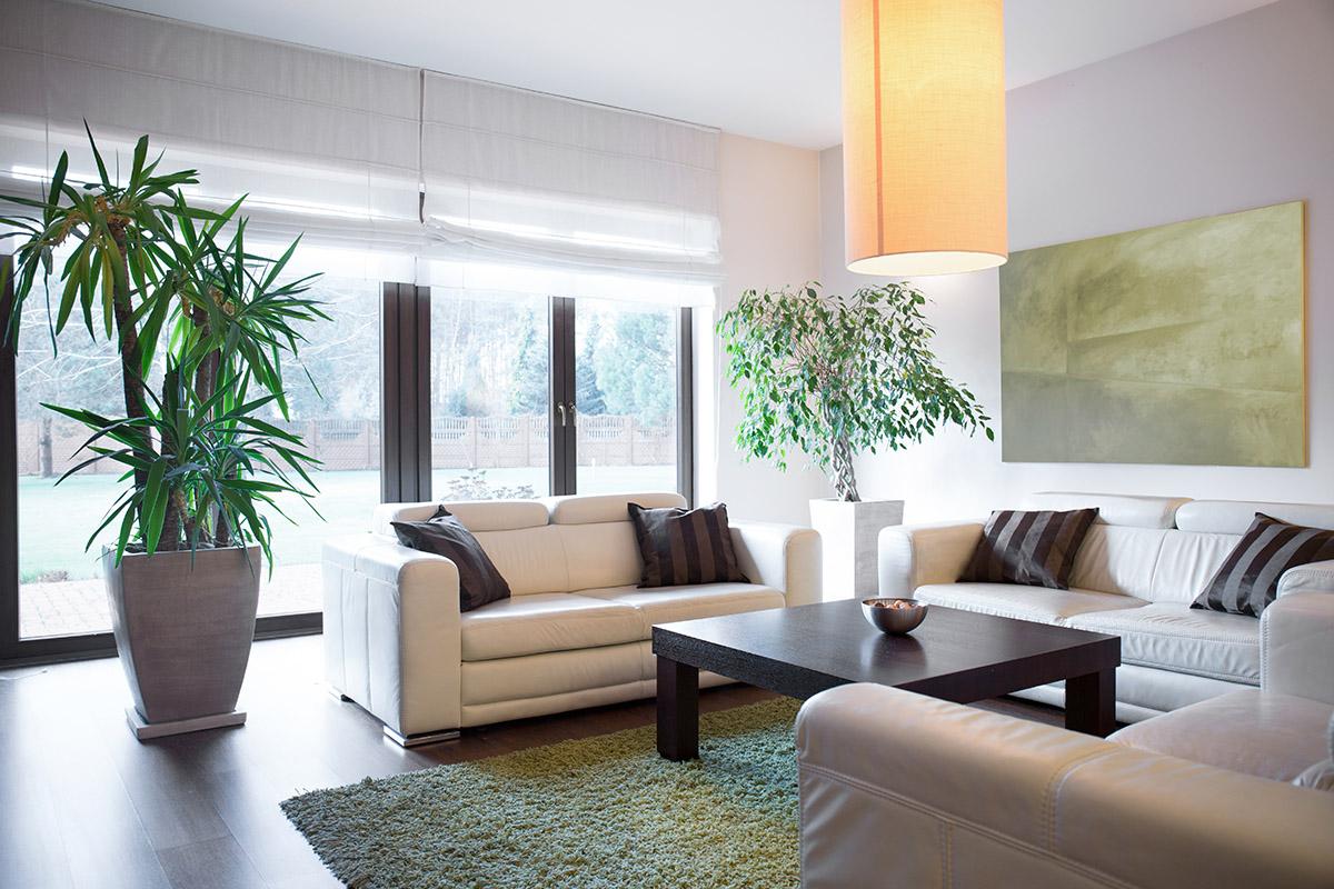 Einliegerwohnungen sollten über Wohn-, Ess-, Schlaf- und Badezimmer verfügen.