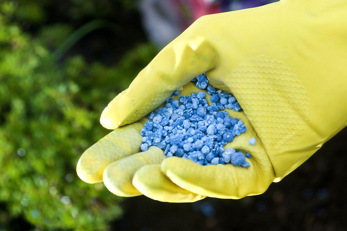 Mineralischer Dünger ist einfach und bequem anzuwenden.