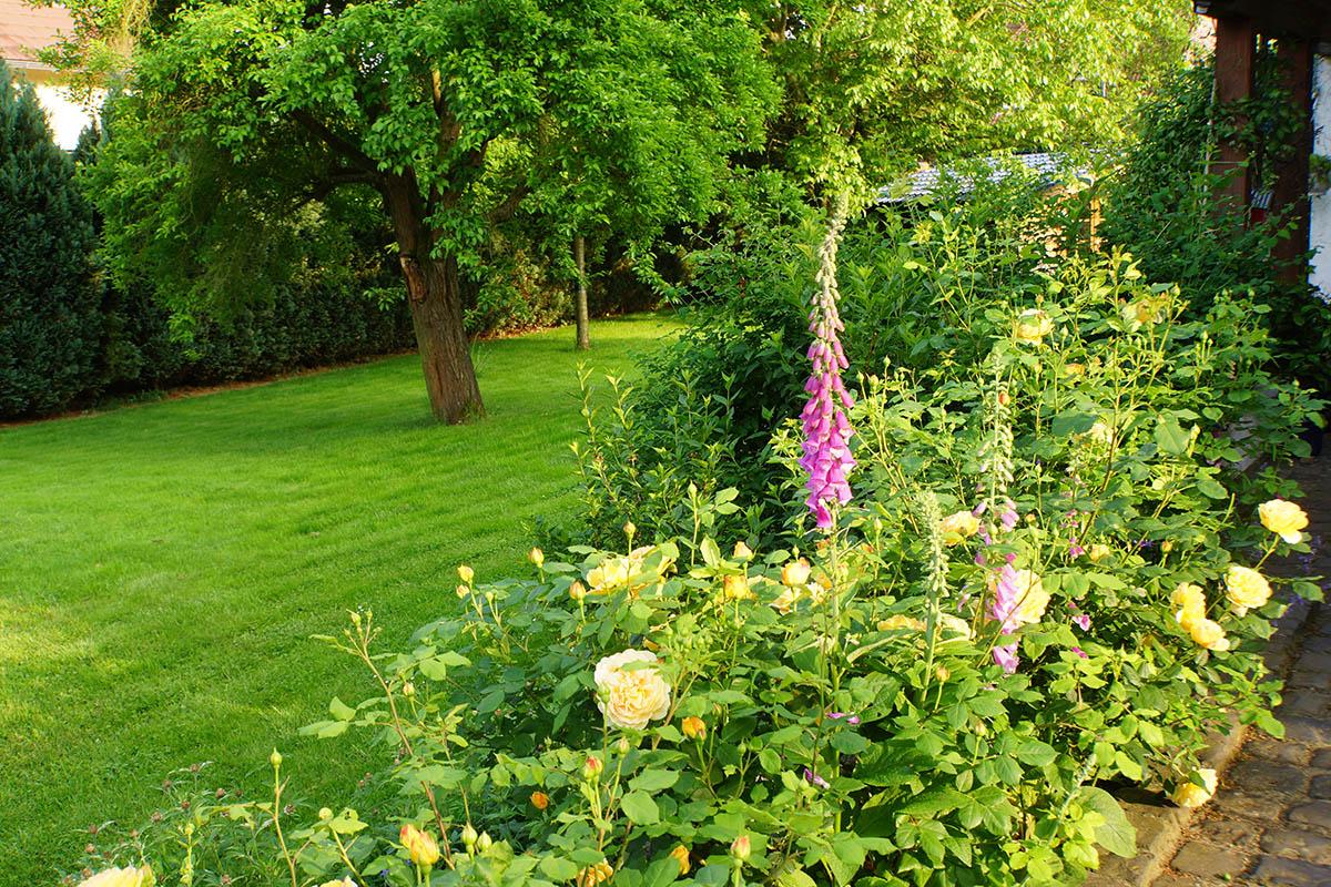 Ein Blumenbeet gestalten kann schön sein und viel Freude bringen.