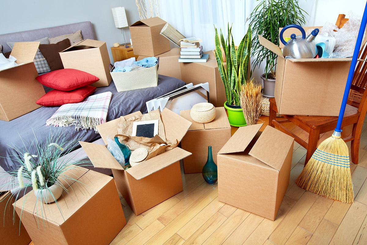 Die Wohnung entrümpeln ist ein unumgehbares und umfangreiches Unterfangen.