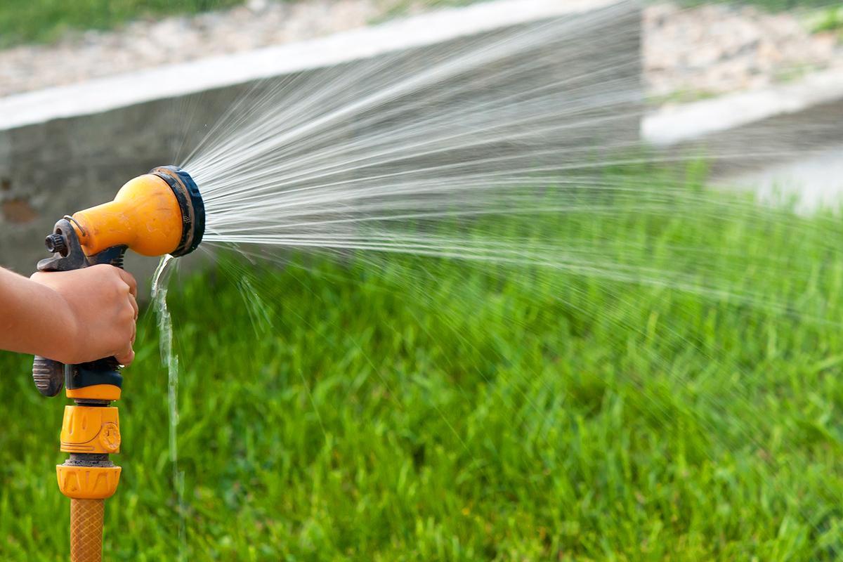 Es ist wichtig, den Boden gut zu durchfeuchten, damit er für Feuchtigkeit aufnahmebereit bleibt.