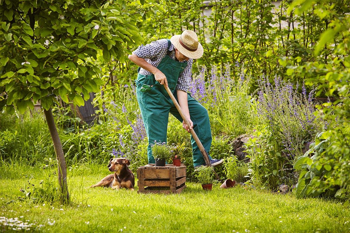 Erwarten Sie sich nicht, dass der angelegte Garten von Anfang an perfekt ist.