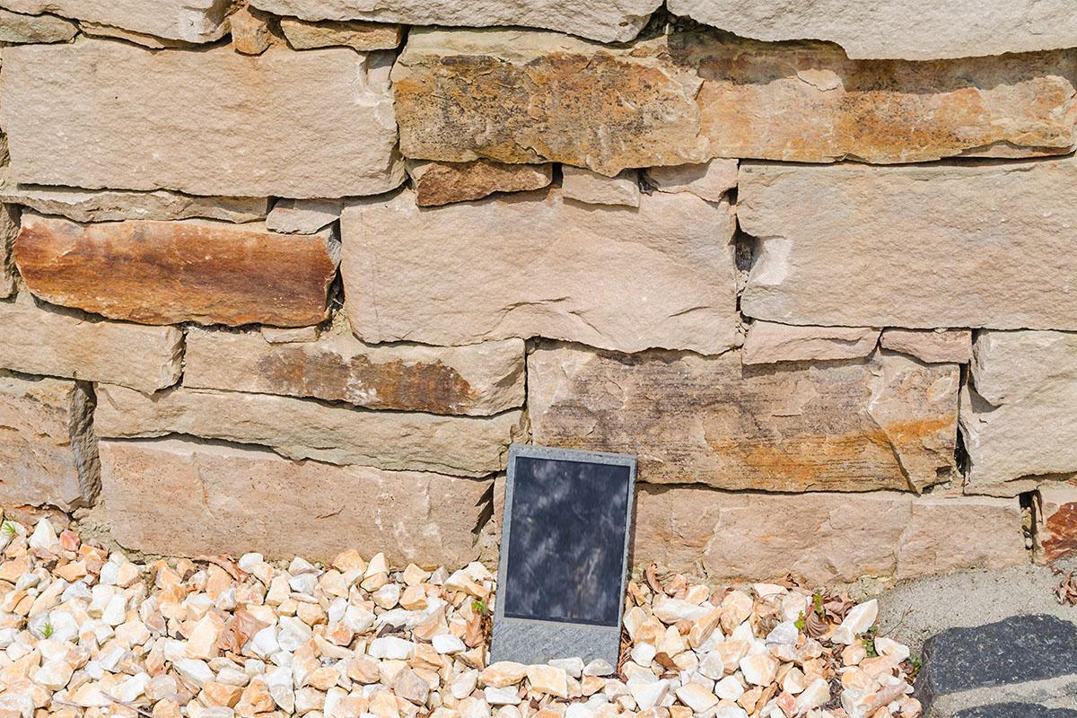 Im Garten finden sich Brutmöglichkeiten durch Trockenmauern oder offene Sandflächen.