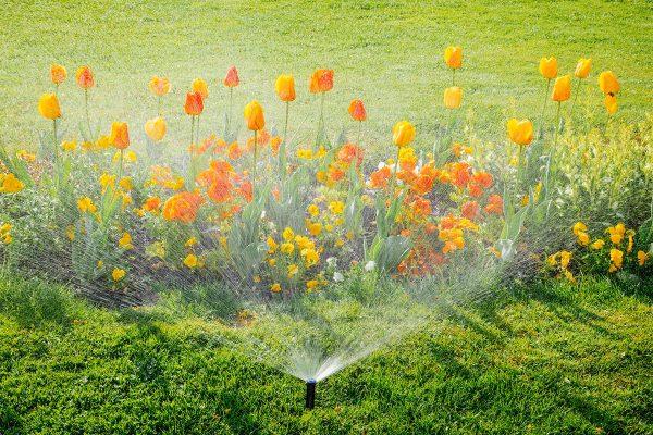 Eine automatische Gartenbewässerung erspart viel Zeit und Mühe.